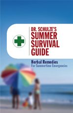 Summer Survival Guide, book cover