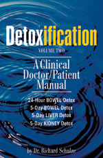 Detoxification: Volume Two, book cover
