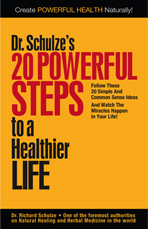 20 Powerful Steps to a Healthier Life, book cover