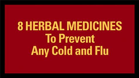 8 HERBAL MEDICINES